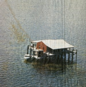 florida houses on the water. a stilt house florida houses on the water